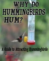 Cover for 'Why Do Hummingbirds Humm?'