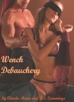 Cover for 'Wench Debauchery'