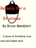 Cover for 'Remedy for a Stuntman'
