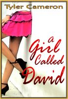 Cover for 'A Girl Called David'