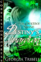 Cover for 'The Destiny Stone Trilogy'