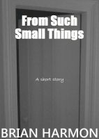 Cover for 'From Such Small Things'