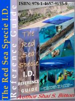 Cover for 'The Red Sea Specie I.D. Reference Guide'