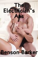 Cover for 'The Electrician's Ass'