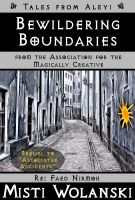 Cover for 'Bewildering Boundaries'