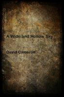 Cover for 'A Wide and Hollow Sky'