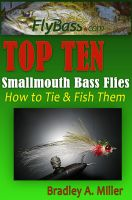 Cover for 'Top Ten Smallmouth Flies'
