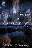 Cover for 'Salvaged Pieces of a Werewolf Lost: A Zou Tai Novella'