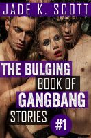 Cover for 'The Bulging Book of GangBang Stories'
