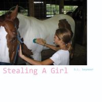 Cover for 'Stealing A Girl'