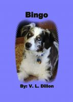 Cover for 'Bingo'