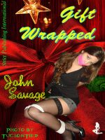 Cover for 'Gift Wrapped'