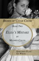 Cover for 'Eliza's Mistake'