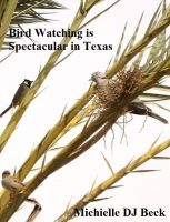Cover for 'Bird Watching is Spectacular in Texas'