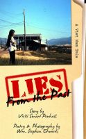 Cover for 'Lies From The Past:  A Viet Nam Tale'