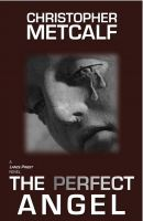 Cover for 'The Perfect Angel'