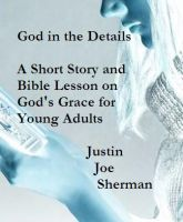 Cover for 'God in the Details - A Short Story and Bible Lesson on God's Grace for Young Adults'