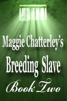 Cover for 'Breeding Slave, Book Two'