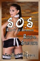 Cover for 'Sluts of Summer: Room Service (S.O.S #1)'