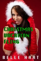 Cover for 'Christmas Vacation Fling'