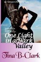 Cover for 'One Light in a Dark Valley'