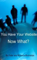 Cover for 'You Have Your Website - Now What?'