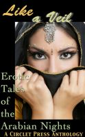 Cover for 'Like a Veil: Erotic Tales of the Arabian Nights'