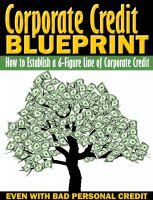 Cover for 'Corporate Credit Blueprint'