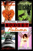 Cover for 'Excessica Anthology Box Set Autumn (Erotica, Anthology, BDSM)'