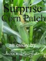 Cover for 'Surprise Corn Patch'