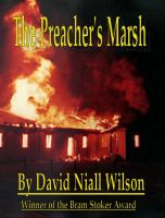Cover for 'The Preacher's Marsh'