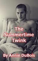 Cover for 'The Summertime Twink'