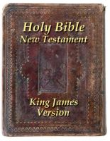 Cover for 'The Holy Bible New Testament'
