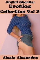 Cover for 'Sinful Shorts: Erotica Collection Vol. 2'