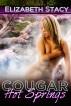 Cougar Hot Springs by Elizabeth Stacy