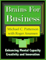 Cover for 'Brains for Business: Enhancing Mental Capacity, Creativity and Innovation'