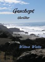 Cover for 'Geschopt'