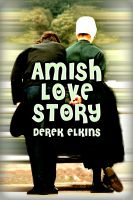 Cover for 'Amish Love Story'