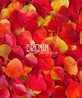 Cover for 'Brenin'