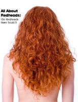Cover for 'All About Redheads: (Do Redheads Have Souls?)'