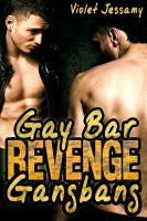 Cover for 'Gay Bar Revenge Gangbang'