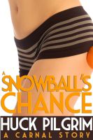 Cover for 'A Snowball's Chance'