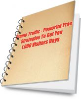 Cover for 'Pronto Traffic - Powerful Free Traffic Techniques To Get You 1,000 Visitors Days'