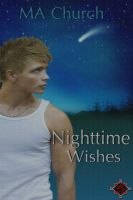 Cover for 'Nighttime Wishes'