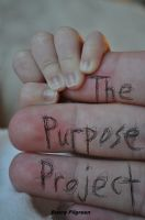 Cover for 'The Purpose Project'