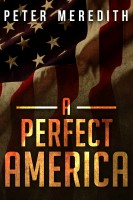 Cover for 'A Perfect America'