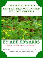 Cover for 'Abe's Guide to September/October Wildflowers'