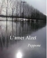 Cover for 'L'amer Alzeï'