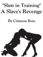 "Cover for '""Sluts in Training"" A Slave's Revenge'"