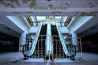 Cover for 'Flexible Survival - Mall'